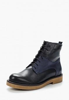 Ботинки, Accord, цвет: синий. Артикул: AC009AWVIA48. Обувь