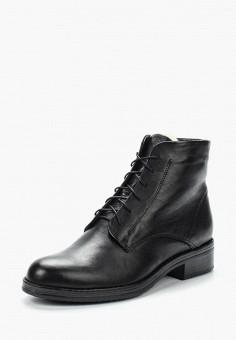 Ботинки, Accord, цвет: черный. Артикул: AC009AWVIA49. Обувь