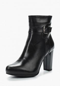 Ботильоны, Accord, цвет: черный. Артикул: AC009AWVIA50. Обувь