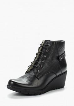 Ботильоны, Accord, цвет: черный. Артикул: AC009AWVIA53. Обувь