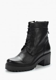 Ботильоны, Accord, цвет: черный. Артикул: AC009AWVIA54. Обувь