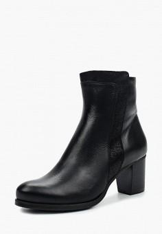 Ботильоны, Accord, цвет: черный. Артикул: AC009AWWXX26. Обувь