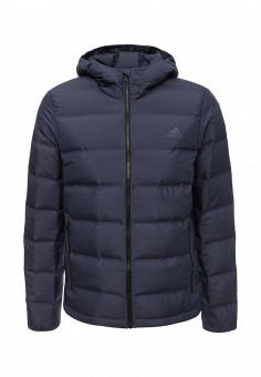 Пуховик, adidas, цвет: синий. Артикул: AD094EMUOD66. Одежда / Верхняя одежда / Пуховики и зимние куртки