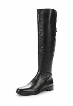Ботфорты, Alesya, цвет: черный. Артикул: AL048AWVHR79. Обувь / Сапоги