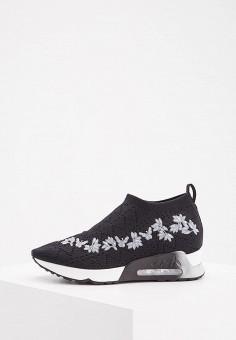Кроссовки, Ash, цвет: черный. Артикул: AS069AWAAJR3. Обувь / Кроссовки и кеды / Кроссовки