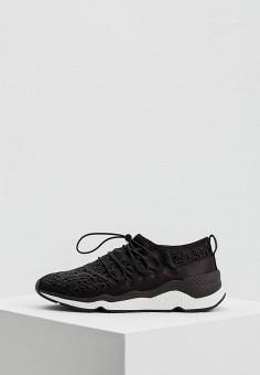 Кроссовки, Ash, цвет: черный. Артикул: AS069AWAAJT0. Обувь / Кроссовки и кеды / Кроссовки