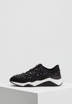 Кроссовки, Ash, цвет: черный. Артикул: AS069AWAAJT4. Обувь / Кроссовки и кеды / Кроссовки