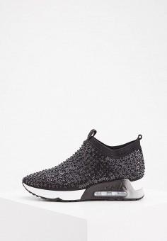 Кроссовки, Ash, цвет: черный. Артикул: AS069AWAAJT9. Обувь / Кроссовки и кеды / Кроссовки