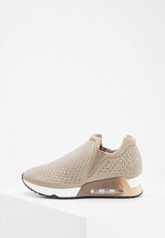 Кроссовки, Ash, цвет: серый. Артикул: AS069AWAAJU2. Обувь / Кроссовки и кеды / Кроссовки