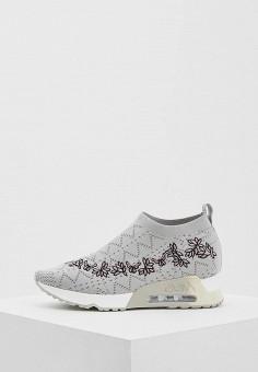 Кроссовки, Ash, цвет: серый. Артикул: AS069AWAAJU3. Обувь / Кроссовки и кеды / Кроссовки
