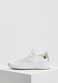 Кроссовки, Ash, цвет: белый. Артикул: AS069AWAAJU6. Обувь / Кроссовки и кеды / Кроссовки