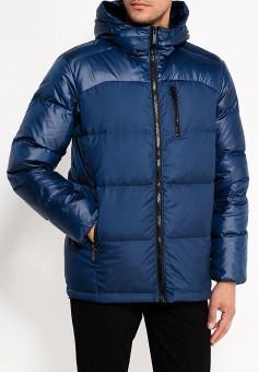 Пуховик, Baon, цвет: синий. Артикул: BA007EMWBF44. Одежда / Верхняя одежда