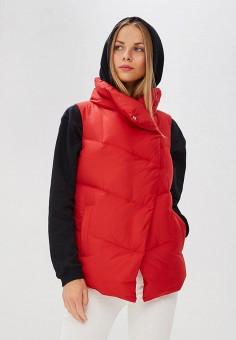 Жилет утепленный, Baon, цвет: красный. Артикул: BA007EWCLCC0. Одежда / Верхняя одежда
