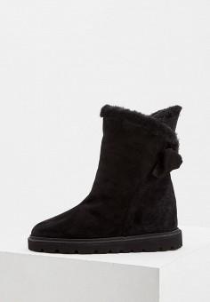 Полусапоги, Baldinini, цвет: черный. Артикул: BA097AWCEGL3. Обувь