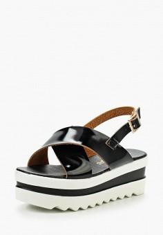 Босоножки, Catherine, цвет: черный. Артикул: CA073AWIVU92. Обувь / Босоножки