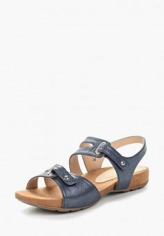 Сандалии, Caprice, цвет: синий. Артикул: CA107AWAAIF3. Обувь / Сандалии