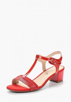 Босоножки, Caprice, цвет: красный. Артикул: CA107AWAAIH1. Обувь / Босоножки