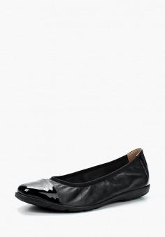 Балетки, Caprice, цвет: черный. Артикул: CA107AWAAJA8. Обувь / Балетки