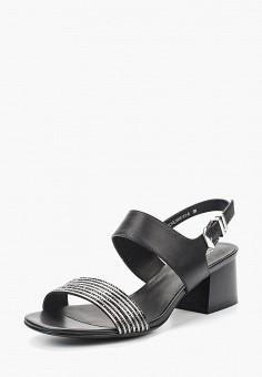 Босоножки, Covani, цвет: черный. Артикул: CO012AWAURY8. Обувь / Босоножки