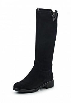 Сапоги, Covani, цвет: черный. Артикул: CO012AWWOX63. Обувь / Сапоги
