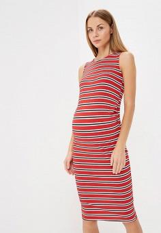 Платье, Dorothy Perkins Maternity, цвет: красный. Артикул: DO028EWCEWM4. Одежда / Платья и сарафаны