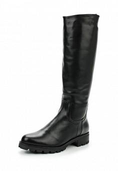 Сапоги, Dolce Vita, цвет: черный. Артикул: DO928AWXGP38. Обувь / Сапоги