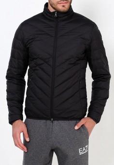 Пуховик, EA7, цвет: черный. Артикул: EA002EMUEE46. Одежда / Верхняя одежда / Пуховики и зимние куртки