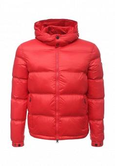 Пуховик, EA7, цвет: красный. Артикул: EA002EMUEE54. Премиум / Одежда / Верхняя одежда / Пуховики