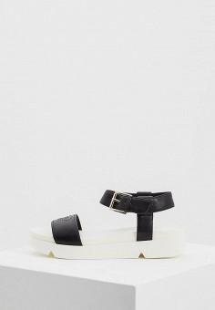 Босоножки, Emporio Armani, цвет: черный. Артикул: EM598AWZVZ70. Premium / Обувь / Босоножки