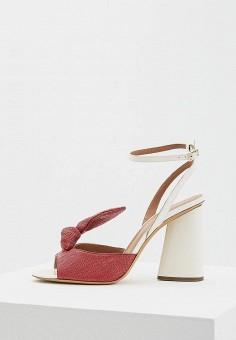 Босоножки, Emporio Armani, цвет: бордовый. Артикул: EM598AWZVZ85. Premium / Обувь / Босоножки