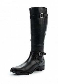 Сапоги, Geox, цвет: черный. Артикул: GE347AWUZF93. Обувь / Сапоги