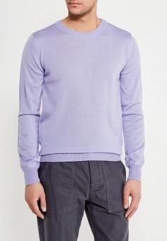 Джемпер, Modis, цвет: фиолетовый. Артикул: MO044EMALGR7. Одежда / Джемперы, свитеры и кардиганы
