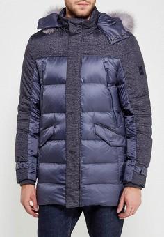 Пуховик, GT Gualtiero, цвет: синий. Артикул: MP002XM05QRG. Одежда / Верхняя одежда / Пуховики и зимние куртки