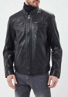 Куртка кожаная, Jorg Weber, цвет: черный. Артикул: MP002XM0YJEV. Одежда / Верхняя одежда / Кожаные куртки