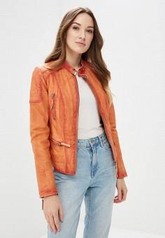 Куртка кожаная, Blue Monkey, цвет: оранжевый. Артикул: MP002XW0IXLH.