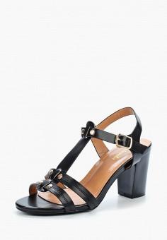 Босоножки, Saivvila, цвет: черный. Артикул: MP002XW15GNE. Обувь / Босоножки
