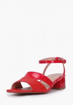 Босоножки, T.Taccardi, цвет: красный. Артикул: MP002XW170J6. Обувь / Босоножки