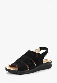 Сандалии, Shoiberg, цвет: черный. Артикул: MP002XW19AUC. Обувь / Сандалии