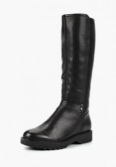 Сапоги, Alessio Nesca, цвет: черный. Артикул: MP002XW19EBX. Обувь