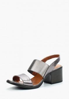 Босоножки, Pierre Cardin, цвет: серебряный. Артикул: MP002XW1C8J6. Обувь / Босоножки