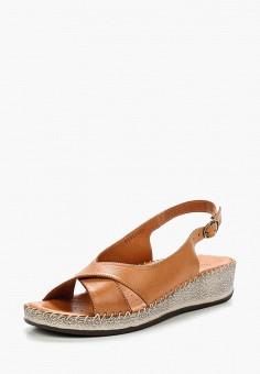 Сандалии, Alessio Nesca, цвет: коричневый. Артикул: MP002XW1C8J7. Обувь / Сандалии