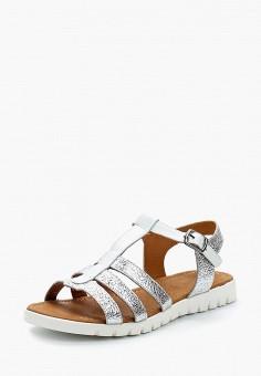 Сандалии, Pierre Cardin, цвет: серебряный. Артикул: MP002XW1C8LZ. Обувь