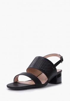 Босоножки, T.Taccardi, цвет: черный. Артикул: MP002XW1G41K. Обувь / Босоножки