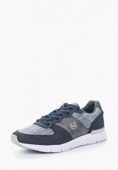 Кроссовки, Patrol, цвет: синий. Артикул: PA050AWALEX5. Обувь / Кроссовки и кеды / Кроссовки