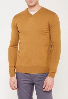 Пуловер, Piazza Italia, цвет: коричневый. Артикул: PI022EMZMO30. Одежда / Джемперы, свитеры и кардиганы