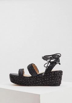 Босоножки, Polo Ralph Lauren, цвет: черный. Артикул: PO006AWYYU81. Premium / Обувь / Босоножки