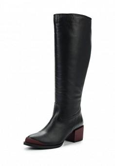 Сапоги, Shoobootique, цвет: черный. Артикул: SH017AWXYB28. Обувь / Сапоги