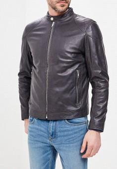 Куртка кожаная, Strellson, цвет: черный. Артикул: ST004EMAWXW0. Одежда / Верхняя одежда / Кожаные куртки