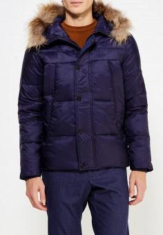 Куртка утепленная, Vitario, цвет: синий. Артикул: VI056EMXFA36. Одежда / Верхняя одежда / Пуховики и зимние куртки