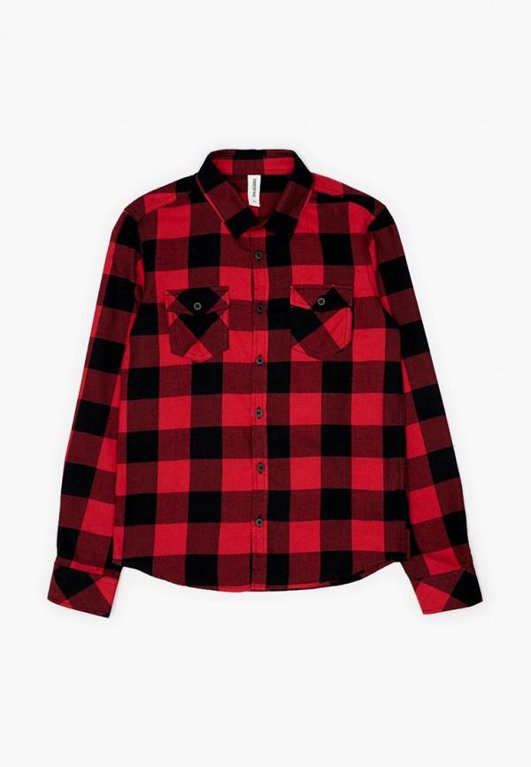 Купить Рубашка Acoola, Acoola AC008EBCVGB5, красный, Осень-зима 2018/2019